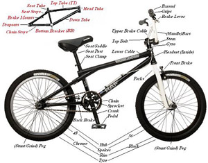 atlas sports bmx services lowell ma rh atlassports com Bike Components Explained Different Types of Bikes
